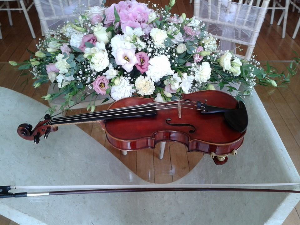 solo violinist bristol bath gloucestershire wiltshire wedding